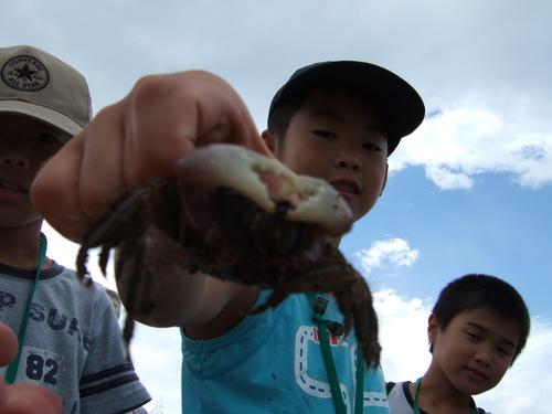 2006_0821yoshinogawa0078